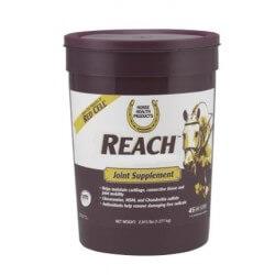 Horse Health Products Reach 1,27kg Integratore per cartilagini articolari