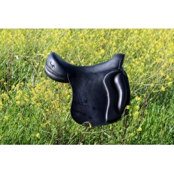 Setzi Saddles Sella Reale