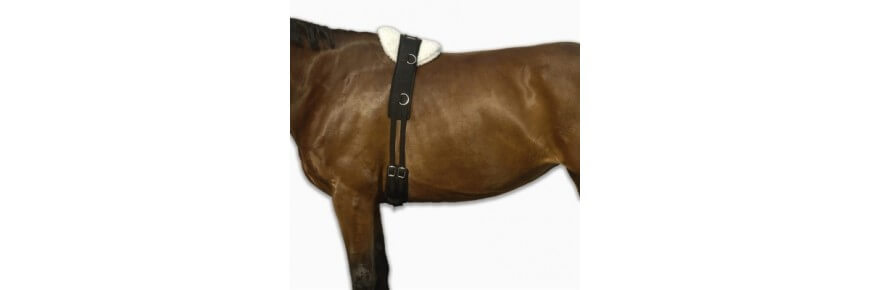 Sottopancia per Cavallo da Endurance