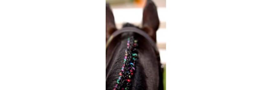 Accessori Pulizia e Lavaggio del Cavallo
