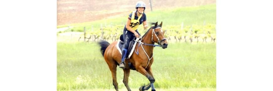 Selle Endurance Setzi e Avia Saddles