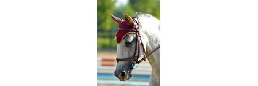 Cuffie Cuffiette per Cavalli Antimosche