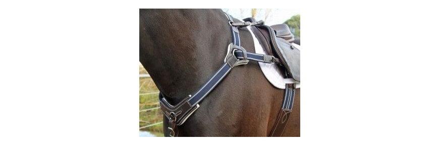 Pettorali Equitazione per Cavalli da Endurance