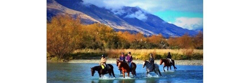 Trekking a Cavallo Prodotti e Accessori Online